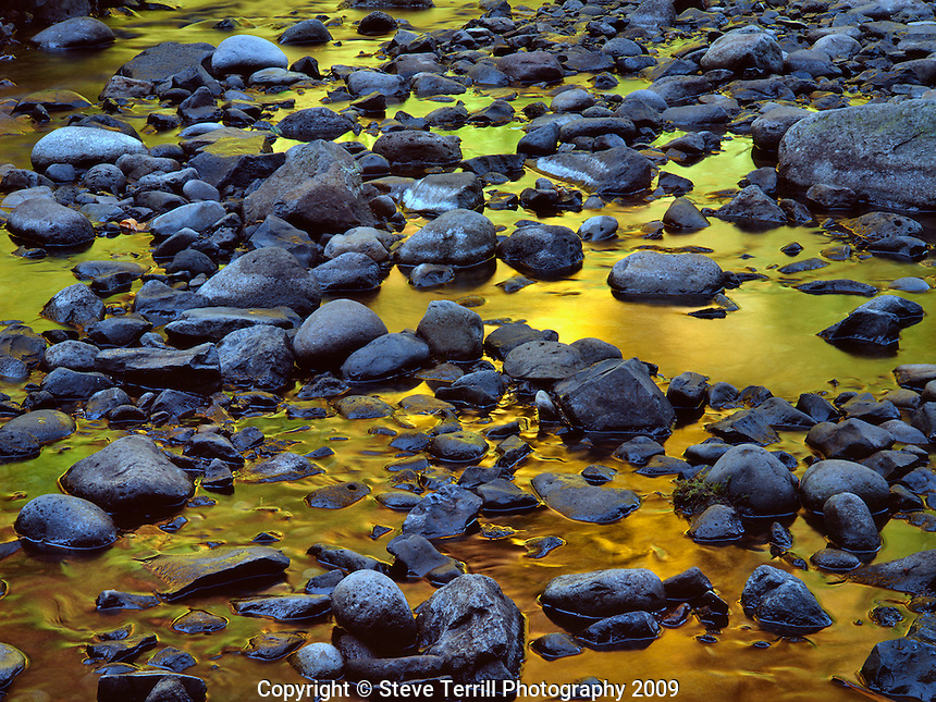 Reflection in  Oneonta Creek in Columbia River Gorge National Scenic Area in Multnomah County Oregon