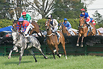 25 Apr 2009: Harrys Crown and Carl Rafter (2nd); Panchax, ridden by Richard Spate; General Skye (3rd) ridden by Jeff Murphy; Justabud, ridden by Jacob Roberts; Eagle Beagle and Paddy Young (1st) in the Blue Ridge Maiden Claiming Hurdle at the Foxfield Races in Charlottesville, Virginia. Eagle Beagle is owned by Barracuda Stables and trained by Ricky Hendriks.