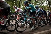 Alexander Kristoff (NOR/UAE-Emirates)<br /> <br /> 108th Scheldeprijs 2020 (1.Pro)<br /> 1 day race from Schoten to Schoten BEL (173km)<br /> <br /> ©kramon