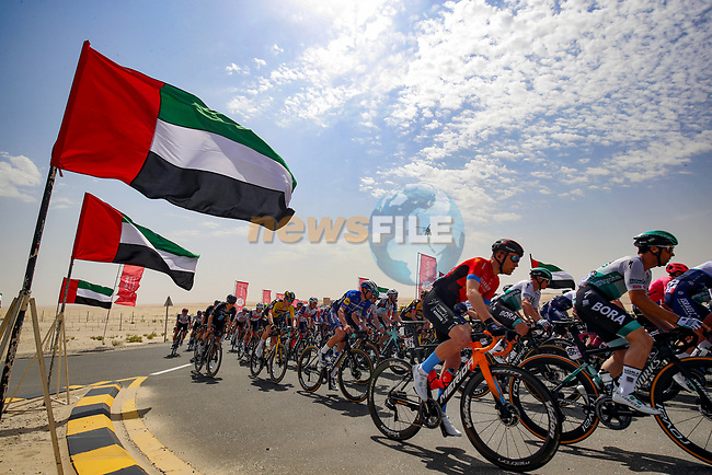 The peloton pass by during Stage 1 of the 2021 UAE Tour the ADNOC Stage running 176km from Al Dhafra Castle to Al Mirfa, Abu Dhabi, UAE. 21st February 2021.  <br /> Picture: Luca Bettini/BettiniPhoto | Cyclefile<br /> <br /> All photos usage must carry mandatory copyright credit (© Cyclefile | Luca Bettini/BettiniPhoto)