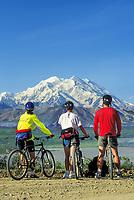 Mountain biking along the Denali Park Road provides amazing views of North American's largest peak, Mt Denali. The 90 mile gravel road traverses spectacular vistas of Alaska's most popular National Park.