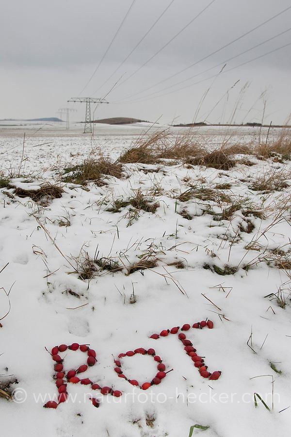 """Naturkunst im Winter, mit roten Hagebutten, Hagebutte das Wort """"rot"""" in den Schnee geschrieben"""