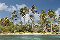 Tiny Island Village in Tonga