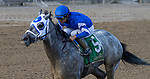 July 31, 2021: Essential Quality #5, ridden by jockey Luis Saez win the Grade 2 Jim Dandy Stakes, a prep race for the Grade 1 Travers at Saratoga Race Course in Saratoga Springs, N.Y. on July 31, 2021. Rob Simmons/Eclipse Sportswire/CSM