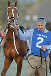 Tapiture trainer Steven Asmussen before the the running of the Southwest Stakes (Grade III) at Oaklawn Park in Hot Springs, Arkansas on February 17, 2014. (Credit Image: © Justin Manning/Eclipse/ZUMAPRESS.com)