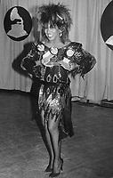 Tina Turner 1985<br /> Photo By John Barrett/PHOTOlink