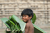 Aldeia Baú, Para State, Brazil. Young Kayapo boy carrying an armful of banana leaves for cooking in.