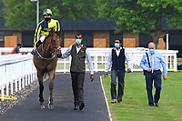 Winner of The Swallowcliffe Handicap (Div 2)  Willy Nilly ridden by Hector Crouch and trained by Clive Cox is led into the Winners enclosure during Horse Racing at Salisbury Racecourse on 13th August 2020