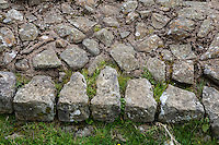 Northumberland, England, UK.  Hadrian's Wall Showing Shapes of Tapered Stones Used in Construction of Outer Facing.  Size and weight of stones was not to exceed what one man could lift.