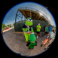 12 June 2021: Vermont Lake Monsters Mascot Champ signs autographs prior to a game against the Westfield Starfires at Centennial Field in Burlington, Vermont. The Lake Monsters defeated the Starfires 4-1 at Centennial Field, in Burlington, Vermont. Mandatory Credit: Ed Wolfstein Photo *** RAW (NEF) Image File Available ***