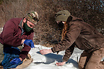 New Hampshire Fish and Game biological technician, Brett Ferry (L), and University of New Hampshire graduate student, Melissa Bauer (R) collect ear clipping from New England cottontail rabbit inside the Great Bay National Wildlife Refuge.