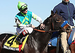 6 March 2010: Wallstreet Wonder and jockey Channing Hill before The Toboggan at Aqueduct Racetrack in Ozone Park NY.