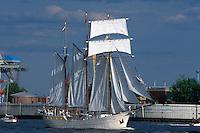 Deutschland, Hamburg, Segelschiff Mare Frisium beim Hafengeburtstag