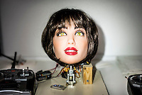 Sky is a protoype of an animatronic robotic head designed for oral sex by Matt McMullen. Matt McMullen, the creator of the Real Doll, is trying to combine different technologies to make a sex robot.  The Real Doll is a high-end sex doll created by Matt McMullen. McCullen is experimenting with Artificial Intelligence, Virtual Reality and Animatronics.