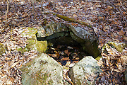 Remnants of a dug well at an abandoned 1800s hill farming community along old South Landaff Road in Landaff, New Hampshire USA.