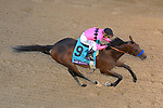 November 2, 2018: Game Winner #9, ridden by Joel Rosario, wins the Sentient Jet Juvenile on Breeders' Cup World Championship Friday at Churchill Downs on November 2, 2018 in Louisville, Kentucky. John Voorhees/Eclipse Sportswire/CSM