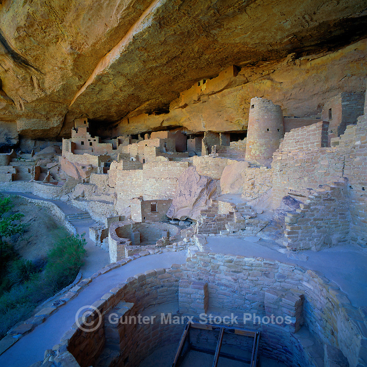 Mesa Verde National Park, Colorado, USA - Cliff Palace, an Ancestral Puebloan aka Anasazi Cliff Dwelling and Ruins, Kiva in foreground