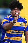Tasman Trophy - Wanderers v Kahurangi