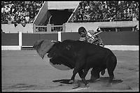 4 Mai 1967. El Cordoba dans les arènes de Toulouse.