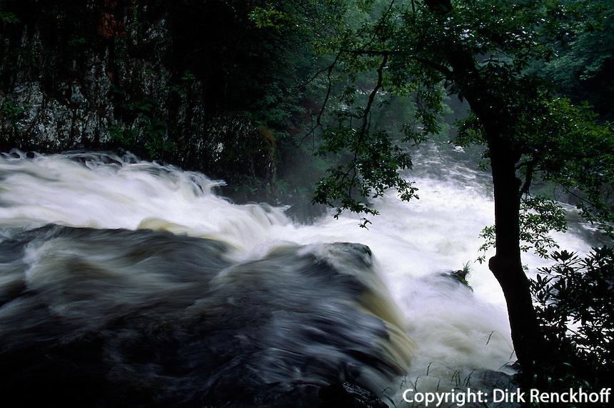 Großbritannien, Wales, Snowdonia, Swallow Falls