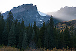 Hallett Peak, fading light, evening, fall, willows, peaks, trees, forest, mountains, landscape, scenic, Rocky Mountain National Park, Colorado, Rocky Mountains, USA