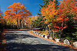 Fall view along a carriage road in Acadia National Park, Maine, USA