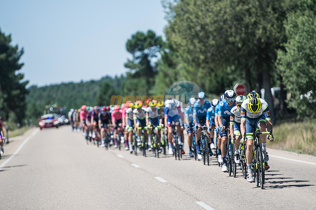 The peloton led by Intermarché-Wanty-Gobert Matériaux during Stage 4 of La Vuelta d'Espana 2021, running 163.9km from Burgo de Osma to Molina de Aragon, Spain. 17th August 2021.    <br /> Picture: Unipublic/Charly Lopez | Cyclefile<br /> <br /> All photos usage must carry mandatory copyright credit (© Cyclefile | Charly Lopez/Unipublic)