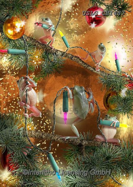 CHIARA,CHRISTMAS ANIMALS, WEIHNACHTEN TIERE, NAVIDAD ANIMALES, paintings+++++,USLGCHI487,#XA# ,funny ,funny