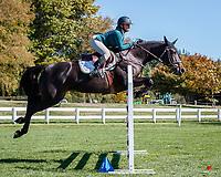Class 25: Horse 1.10m - Ranking Class