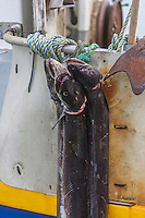 Royaume-Uni, îles Anglo-Normandes, île de Guernesey,  Torteval: le petit port de Portelet  - retour de pêche// United Kingdom, Channel Islands, Guernsey island,Torteval: the small port of Portelet.