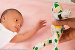 Newborn baby girl 12 days old pre-reaching toward high contrast toy