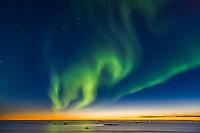 Aurora borealis over the Beaufort Sea, Arctic Ocean, looking north from Barter Island, Kaktovik, in Alaska's high Arctic.