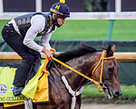 August 31, 2020: King Guillermo exercises as horses prepare for the 2020 Kentucky Derby and Kentucky Oaks at Churchill Downs in Louisville, Kentucky. The race is being run without fans due to the coronavirus pandemic that has gripped the world and nation for much of the year. John Voorhees/Eclipse Sportswire/CSM