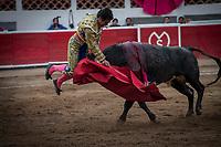 """Querétaro, Qro. 1 de enero de 2019.- Pepe Díaz, matador de toros durante su faena en la Corrida de Año Nuevo en la Plaza de Toros La Santa María en la que alternó con Brandon Campos y Luis Manuel Campos """"El Canelo"""".<br /> <br /> Foto: Demian Chávez"""
