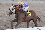 October 03, 2015:  Fellowship with Jose Caraballo up wins the In Reality Division of the Florida Sire Stakes at Gulfstream Park.  Gulfstream Park, Hallandale Beach (FL). Arron Haggart/ESW/CSM