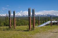 Trans Alaska oil pipeline traverses the tundra south of Delta Junction, Alaska