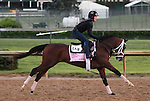 LOUISVILLE, KY - APRIL 27: Rachel's Valentina (Bernardini x Rachel Alexandra, by Medaglia d'Oro) gallops playfully with her exercise rider Amy Mullen at Churchill Downs, Louisville KY, in preparation for the Kentucky Oaks.Owner Stonestreet Stables LLC, trainer Todd A. Pletcher.  (Photo by Mary M. Meek/Eclipse Sportswire/Getty Images)