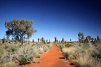 Path through the desert in the Red Centre, Australia