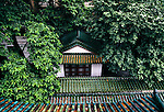 foliage and rooftops from Six Banyon Tree Temple in city of Guangzhou, China, Asia