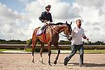 Starship Truffles with Edgard Zayas up wins the Princess Rooney Handicap(G1) at Calder Race Course. Miami Gardens,  Florida. 07-06-2013