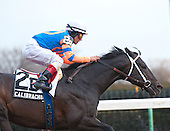Alpha wins Withers and other Big A stakes action - 02/04/12