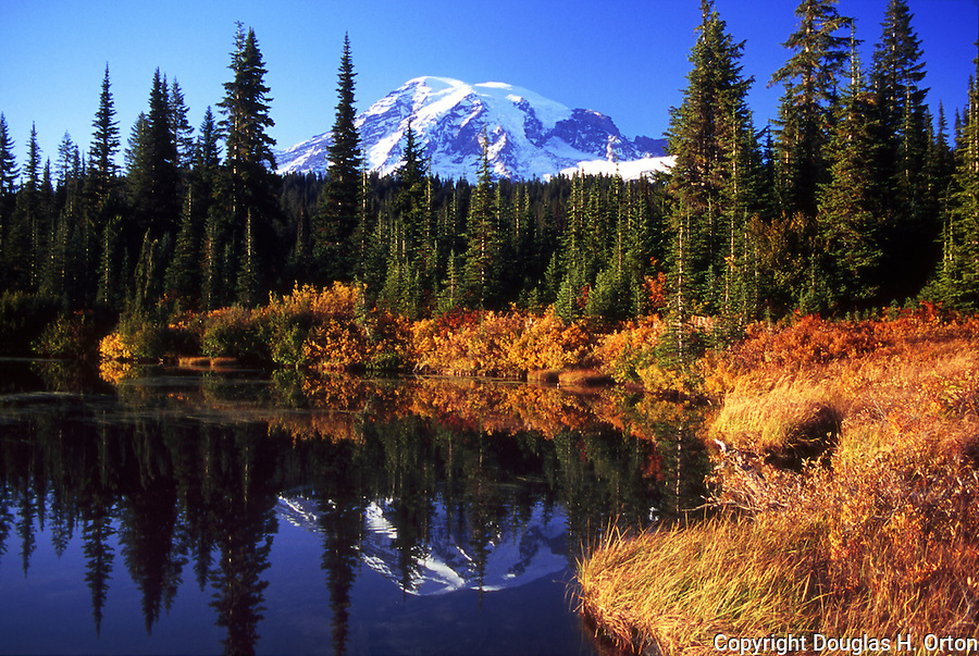 Mt. Rainier seen in reflection lake on fall evening late in day.