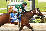 """Dust and Diamonds with Julien Leparoux scores upset victor in the Grade II Gallant Bloom Handicap for fillies & mares, 3-year old & up, going  6 1/2 furlongs on the dirt.  It was a """"Win & You're In"""" guarenteeing a spot in the Breeder's Cup Filly and Mare Sprint. Trainer Steve Assmusen.  Owner Padua Stables."""