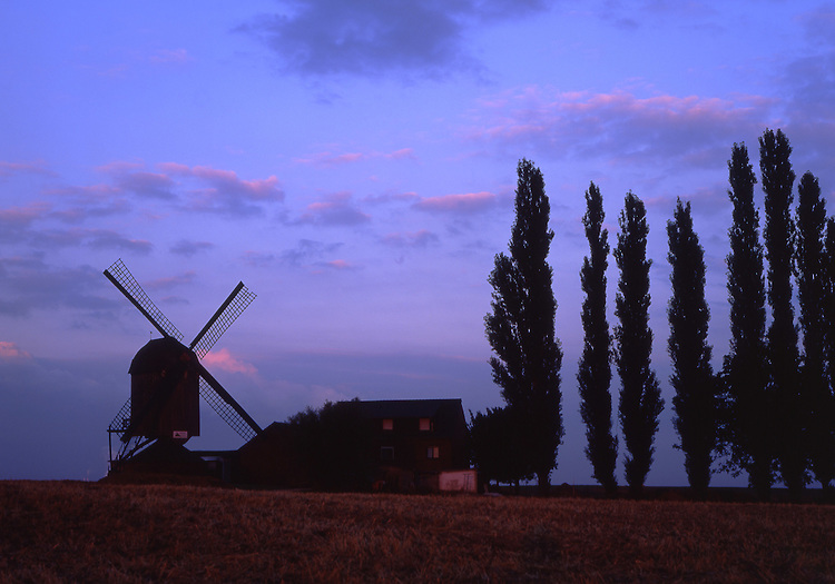 Europe, DEU, Germany, North Rhine Westphalia, Lower Rhine, Titz, Typical Windmill, Dueppelsmuehle, Trees, Silhouette at twilight.....[ For each utilisation of my images my General Terms and Conditions are mandatory. Usage only against use message and proof. Download of my General Terms and Conditions under http://www.image-box.com or ask for sending. A clearance before usage is necessary...Material is subject to royalties. Each utilisation of my images is subject to a fee in accordance to the present valid MFM-List...Contact | archive@image-box.com | www.image-box.com ]