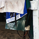 HALLANDALE BEACH, FL - JANUARY 21: California Chrome's saddle and towels after working at Gulfstream Park. (Photo by Arron Haggart/Eclipse Sportswire/Getty Images