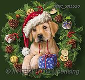 Marcello, CHRISTMAS ANIMALS, WEIHNACHTEN TIERE, NAVIDAD ANIMALES, paintings+++++,ITMCXM1520,#XA# ,Christmas wreath