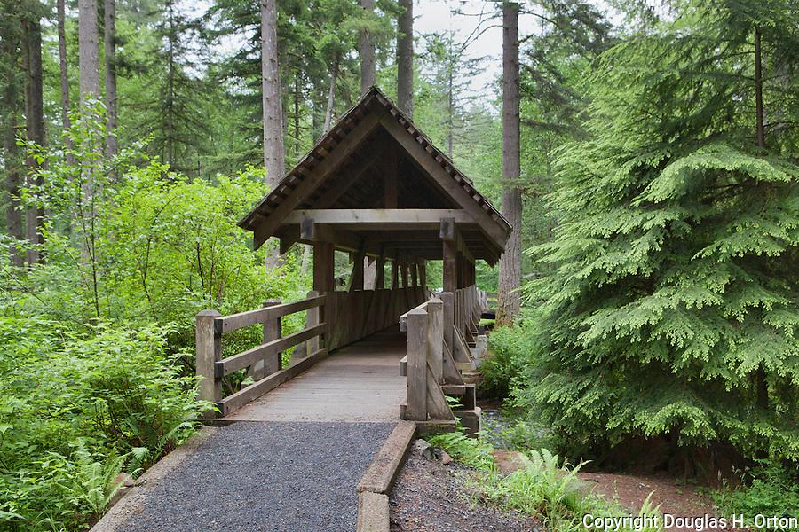 Covered wooden foot bridge over Silver Creek, Silver Falls State Park, Oregon.  Evergreen forest of hemlock, cedar and Douglas Fir.