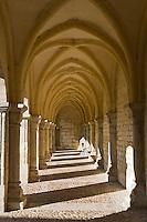 Europe/France/Aquitaine/24/Dordogne/Périgueux:Cloitre de la cathédrale Saint-Front - étape sur le chemin de Compostelle, site classé Patrimoine Mondial de l'UNESCO