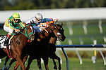 Trip For AJ with John R Velazquez won Sunshine Million Filly and Mare Turf.at Gulfstream Hallendale,FL 01.29.2011