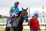 July 29, 2012 Paynter, Rafael Bejarano up, wins the 45th running of the Haskell Invitational at Monmouth Park Racetrack, Oceanport, New Jersey. Trainer is Bob Baffert, owner is Zayat Stables. ©Joan Fairman Kanes/Eclipse Sportswire